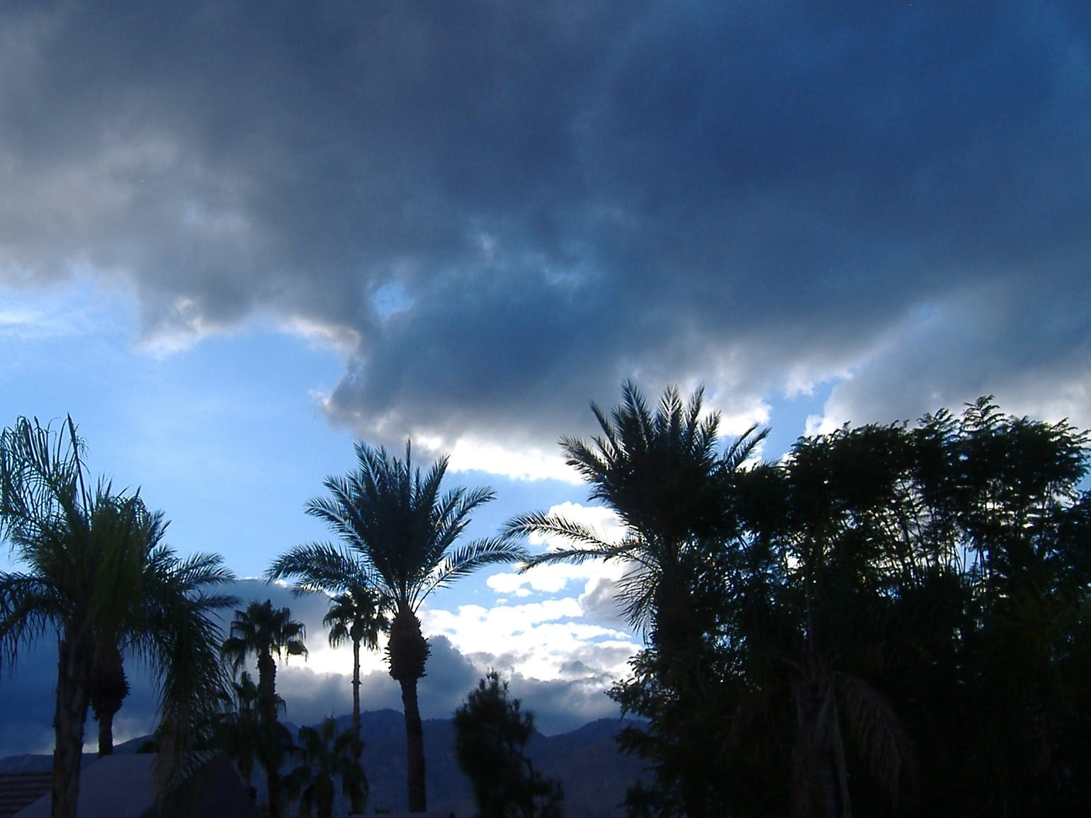 Rooftop Palm Springs Sunset